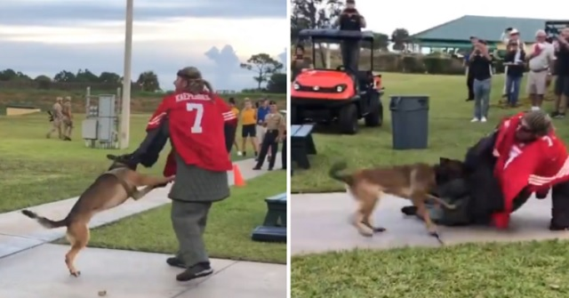 Video Shows Navy Seal Dogs Attacking Colin Kaepernick Stand-In For Not Standing During National Anthem At Navy Seal Museum
