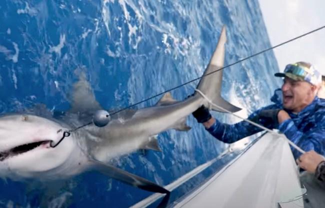 Rob Gronkowski Shark Fishing