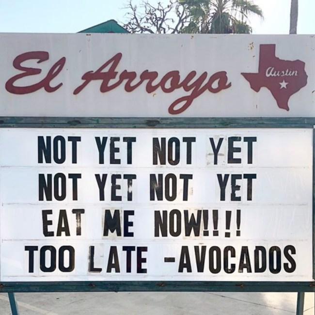 50 best memes ripe avocado