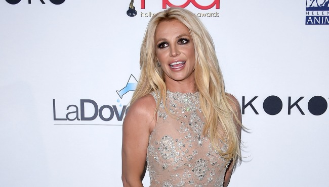 Britney Spears Lawyer Compares Her Mental Fitness To A Coma Patient