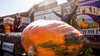 This 2,350-Pound Pumpkin Won The 'Super Bowl Of Pumpkins' Which Is More Than I've Done With My Life This Year
