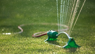 Texas Lady Subdued With Garden Sprinkler After Screaming 'White Lives Matter'