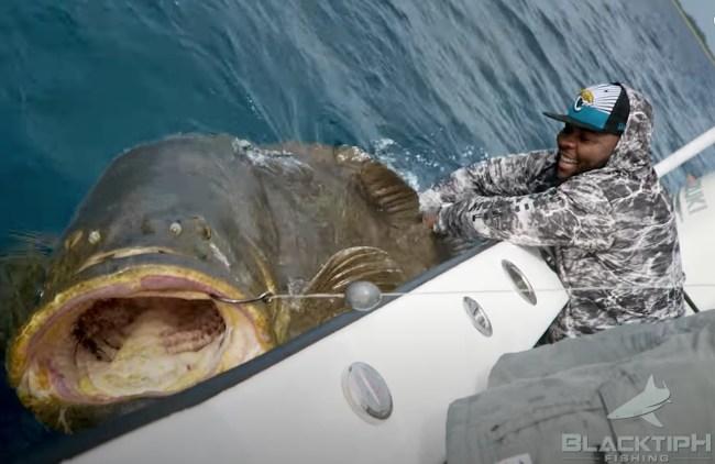 Jawaan Taylor BlacktipH fishing Goliath Grouper