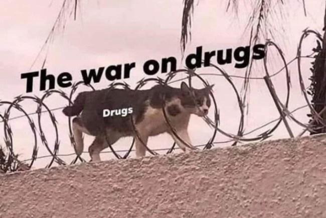 50 best memes drugs war
