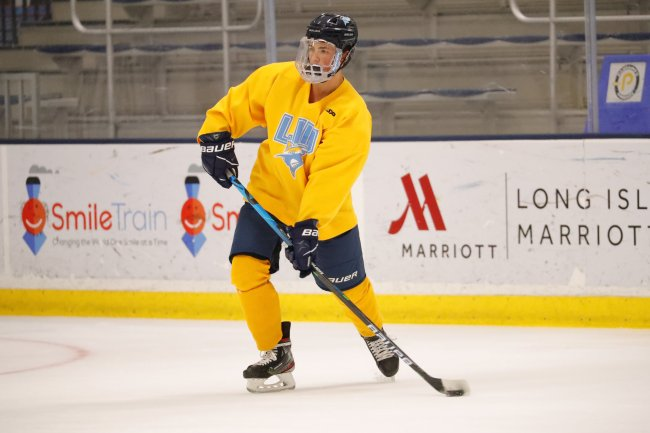 Long Island University Hockey