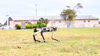 Expert Says Robot Soldiers Just 15 Years Away; Meanwhile, Florida Military Base Deploying Robotic Dogs
