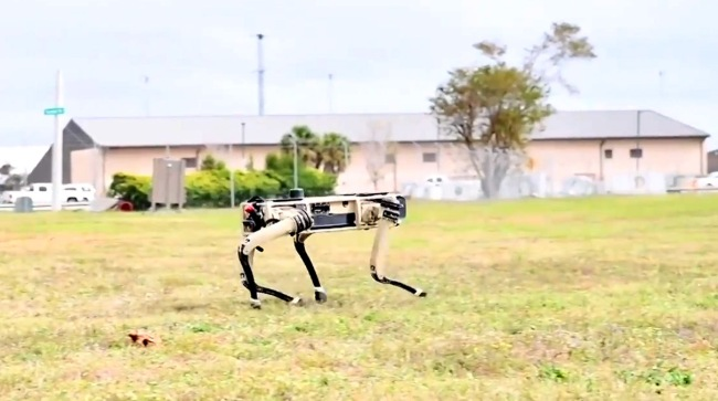 Florida Military Base To Deploy Robotic Dogs Soldiers
