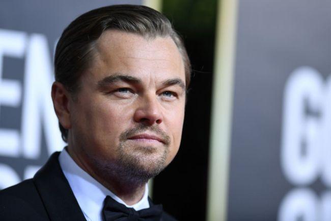 Websites describe Leonardo DiCaprio as having a dad bod in new photos from a beach.