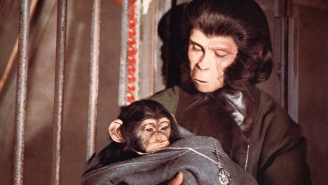 Scientists Spliced Human Genes With Monkeys And Doubled The Size Of Their Brains In 'Planet Of The Apes' Experiment