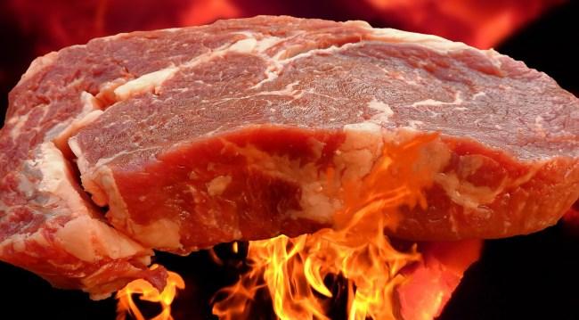 Viewers Left Horrified When Girl On TikTok Cooks Steak In A Toaster