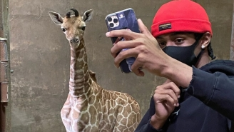 Ja Morant Meets His 'Son' Ja-Raffe, Says He'll Jump Over Him If He's Ever In The Dunk Contest