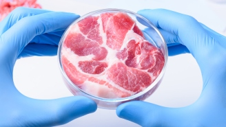 A Company Making Lab-Grown Meat From Human Cells Insists You're 'Technically' Not A Cannibal If You Eat It
