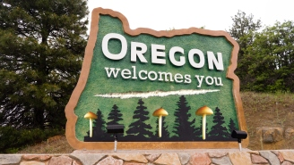 Oregon Becomes First State To Decriminalize All Drugs, Approves Mushrooms For Therapeutic Treatment