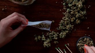 New Jersey Saw A Huge Spike In People Googling 'How To Roll A Joint' Sparked By The State's Legalization Of Marijuana