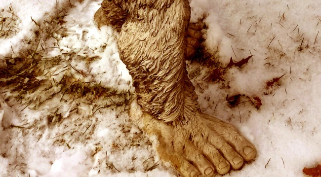 Bigfoot-like 'monkey man' caught in viral photo