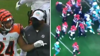 Dolphins HC Brian Flores Tries To Fight Bengals' Mike Thomas As Wild Brawl Breaks Out Between Two Teams After Dirty Hit