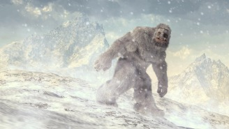 Convincing Bigfoot Sighting Reported In British Columbia Spooks Area Residents