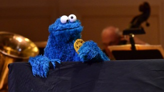 Rare Rock That Looks EXACTLY Like Cookie Monster Could Be Worth $10K