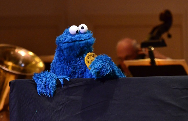 Cookie Monster Rock Discovered In Brazil