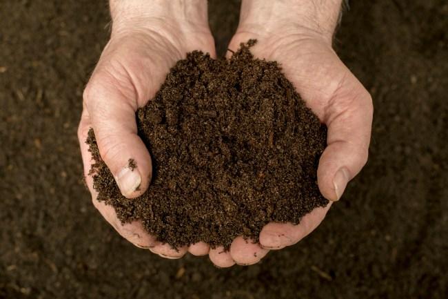 Human Composting Washington