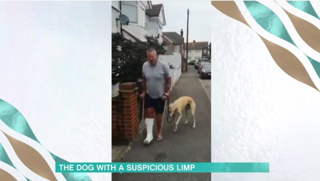 Man Spends 400 To Discover His Limping Dog Was Just Imitating Him