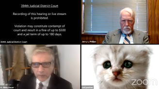 Texas Attorney-At-Paw Can't Turn Off ADORABLE Kitten Filter During Zoom Court Hearing: 'I'm Not A Cat'