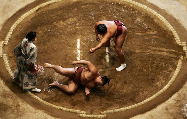 celebrity sumo wrestling