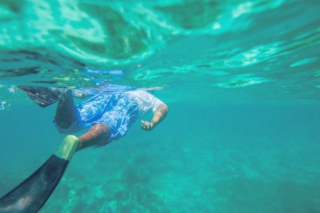 Florida Snorkler Cocaine Discovery