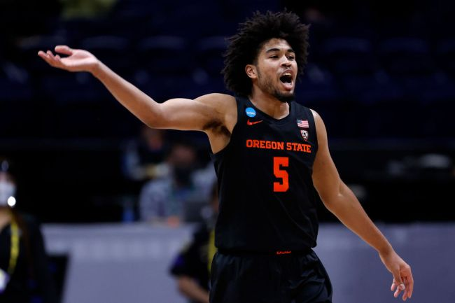 Oregon State Basketball Houston Elite Eight March Madness