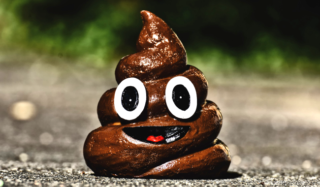 Science Explains How Your Butt Can Tell The Difference Between Poop And A Fart