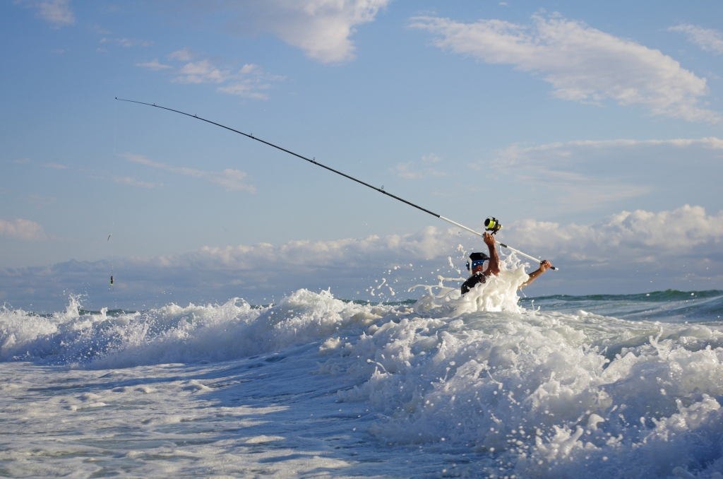 beach fishing for shark