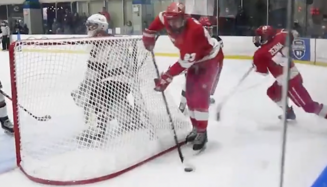 fake lacrosse goal deke hockey