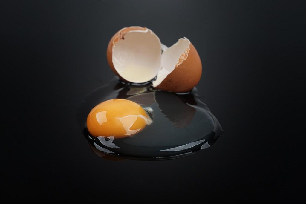 broken egg time lapse
