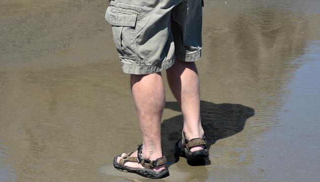 jansport backpack cargo shorts