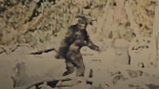 New 'Sasquatch' Documentary Examines If Bigfoot Is A Serial Killer Who Hunted Marijuana Farmers