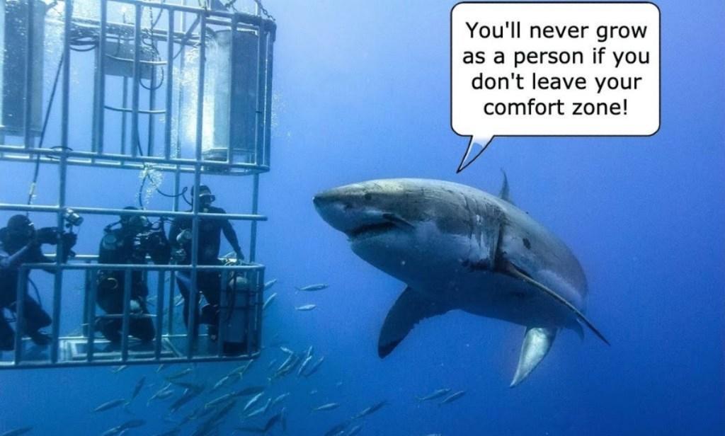 50 funniest daily 2021 memes motivational shark
