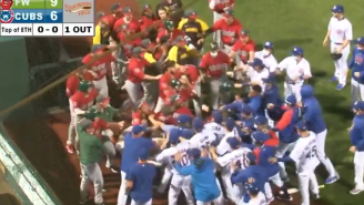 Minor League Teams For The Cubs And Padres Just Raised The Bar For Epic Baseball Fights