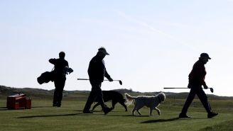 Man Arrested For Allegedly Shooting And Killing A Dog After It Took His Golf Ball