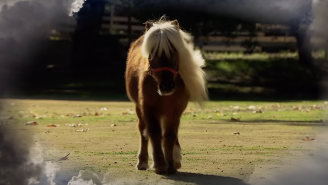 Mouse Rat From 'Parks And Rec' Dropped A Music Video For Its Li'l Sebastian Tribute And You'll Want Some Tissues Nearby
