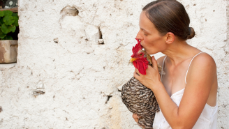 The CDC Is Politely Asking Americans To Stop Kissing Chickens Due To A Spike In Salmonella Cases