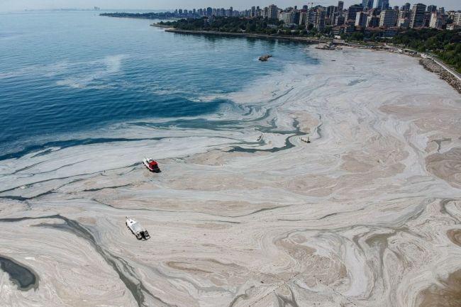 Turkey Sea Snot