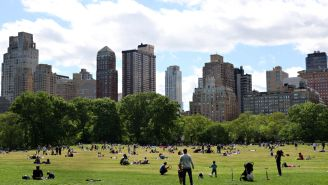 New York City Is Planning A Massive Reopening Concert In Central Park With Big-Name Artists And It's Going To Be Wild