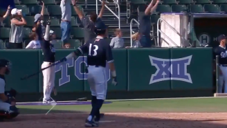 This College Baseball Umpire Who Broke Up An Electric Home Run Celebration Is A Grade-A Weenie