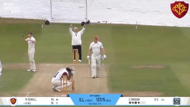 Cricket Smash Windshield
