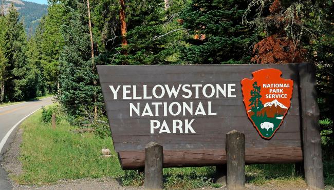 comedian Yellowstone golf video investigation