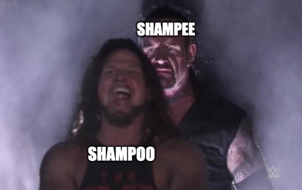 50 best memes shampoo shampee