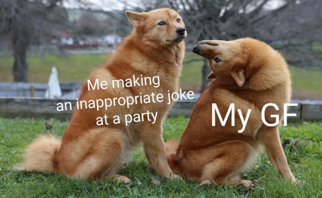 best damn photos 50 funniest memes 2021