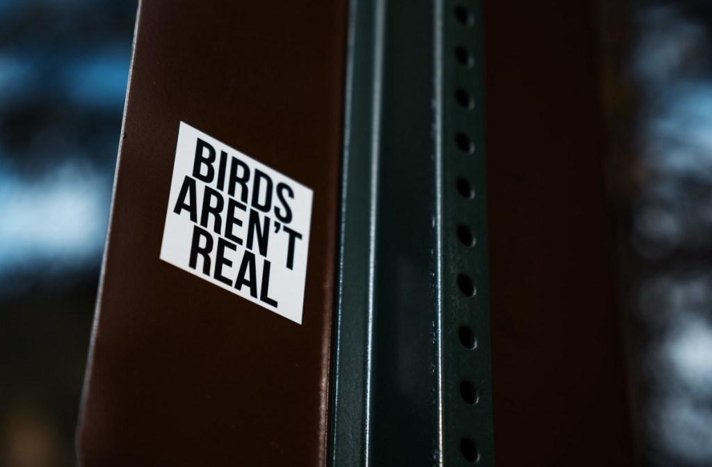 Birds Aren't Real rally Missouri funny