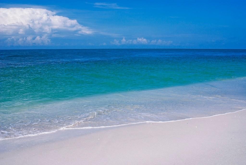 Boca Grande beach Florida hammerhead shark