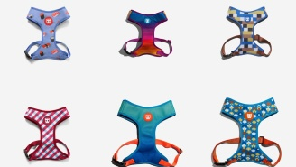 Zee.Dog Sale – Score 50% Off Air Mesh Harnesses And Other Goodies For Man's Best Friend